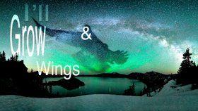 """Fly Away"" Lyric Video  https://youtu.be/cZJMi9QcDR4 #DenverMusic #AlternativeFolk #NewSingle"
