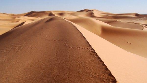 Foto de Dunas en el Desierto - Fotos para todo lo que estás buscando