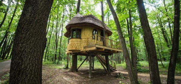 Avem o super idee de vacanță pentru voi, la doar 20 de kilometri de București. Așadar, dacă vreți să vă bucurați de aer curat, relaxare, dar și activități inedite precum cățărări în copaci, atunci Edenland este soluția. Ce puteți face acolo? E un parc de aventură pentru toate vârstele și pentru toate gusturile. Tir cu arcul, paintball, airsoft, trasee în copaci (pe diferite grade de dificultate) toate sunt activități faine pe care le puteți încerca. Ce ne-a plăcut mult este că puteți să…