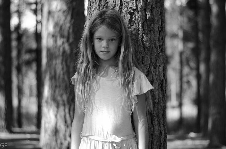 Josie tree.  Tokai Forest