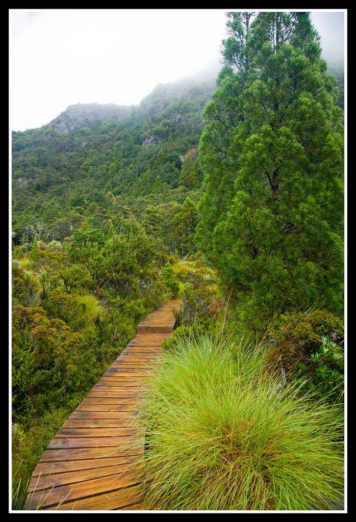 Cradle Mountain National Park, Tasmania, Australia