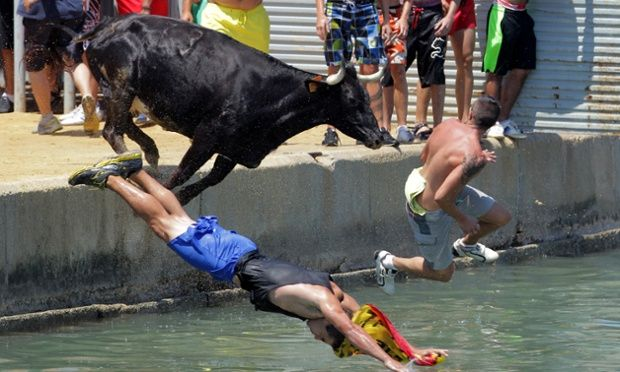 People jump with a bull into the sea during the traditional running of 'Bous a la mar' (Bull in the sea) at Denia's harbour, near Alicante, Spain - 2013
