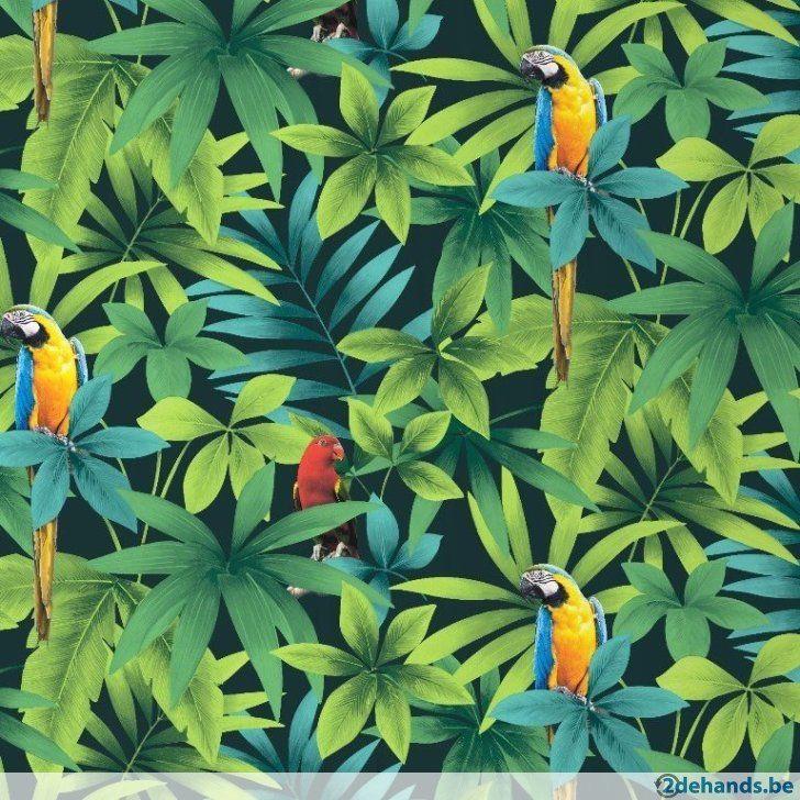 papegaai vogeltropisch bomen bloemen planten natuur behang 5