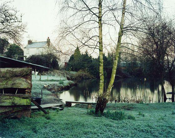 Jem Southam, The Pond at Upton Pyne, 2001.