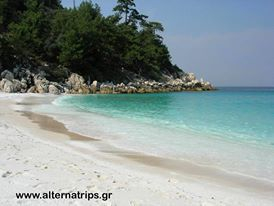 Exotic Saliara beach in Thassos: http://alternatrips.gr/en/aegean-islands/thasos/exotic-saliara-beach-thassos