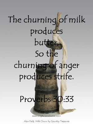 """""""If you have been foolish in exalting yourself Or if you have plotted evil, put your hand on your mouth. For the churning of milk produces butter, And pressing the nose brings forth blood; So the churning of anger produces strife."""" Proverbs 30:32-33"""