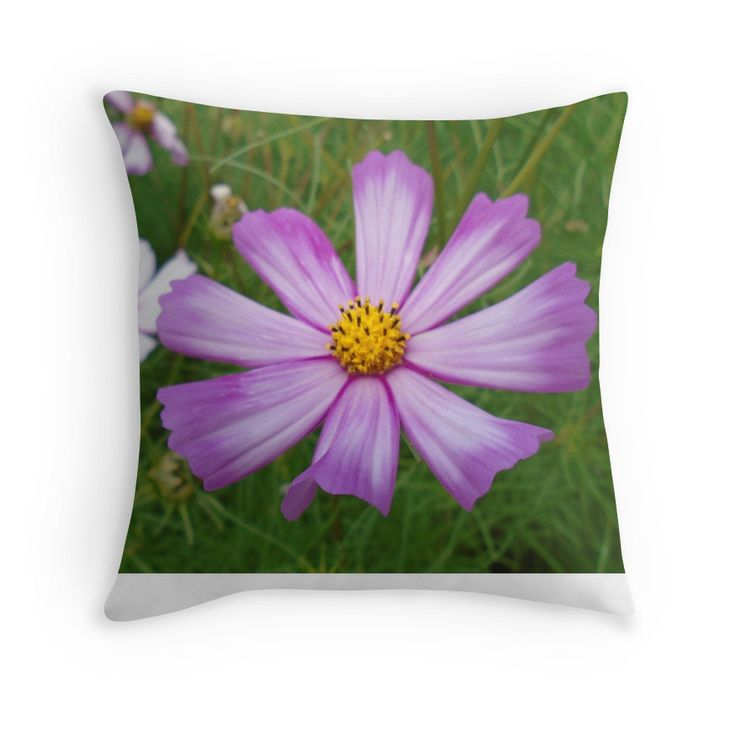 gentle lilac flower