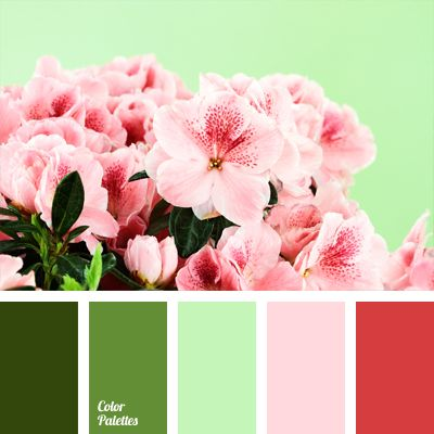 Pink in conjunction with all sorts of shades of green, ranging from salad green to deep dark green, looks great in a pleasant atmosphere of a study, if the owner of the study is a successful, self-sufficient woman. By focusing on pink, you give hope and promise.