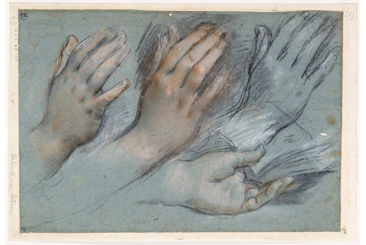 Federico Barocci... Studies for the Hands of the Virgin Mary for the Annunciation, charcoal wth white on blue paper::::     chance a simple gardener: Photo