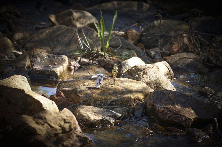 through the creek to Lesmurdie Falls WA, Australia
