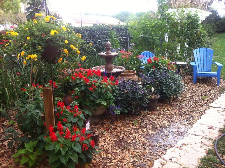 High Quality Image Result For Hummingbird Garden Photo