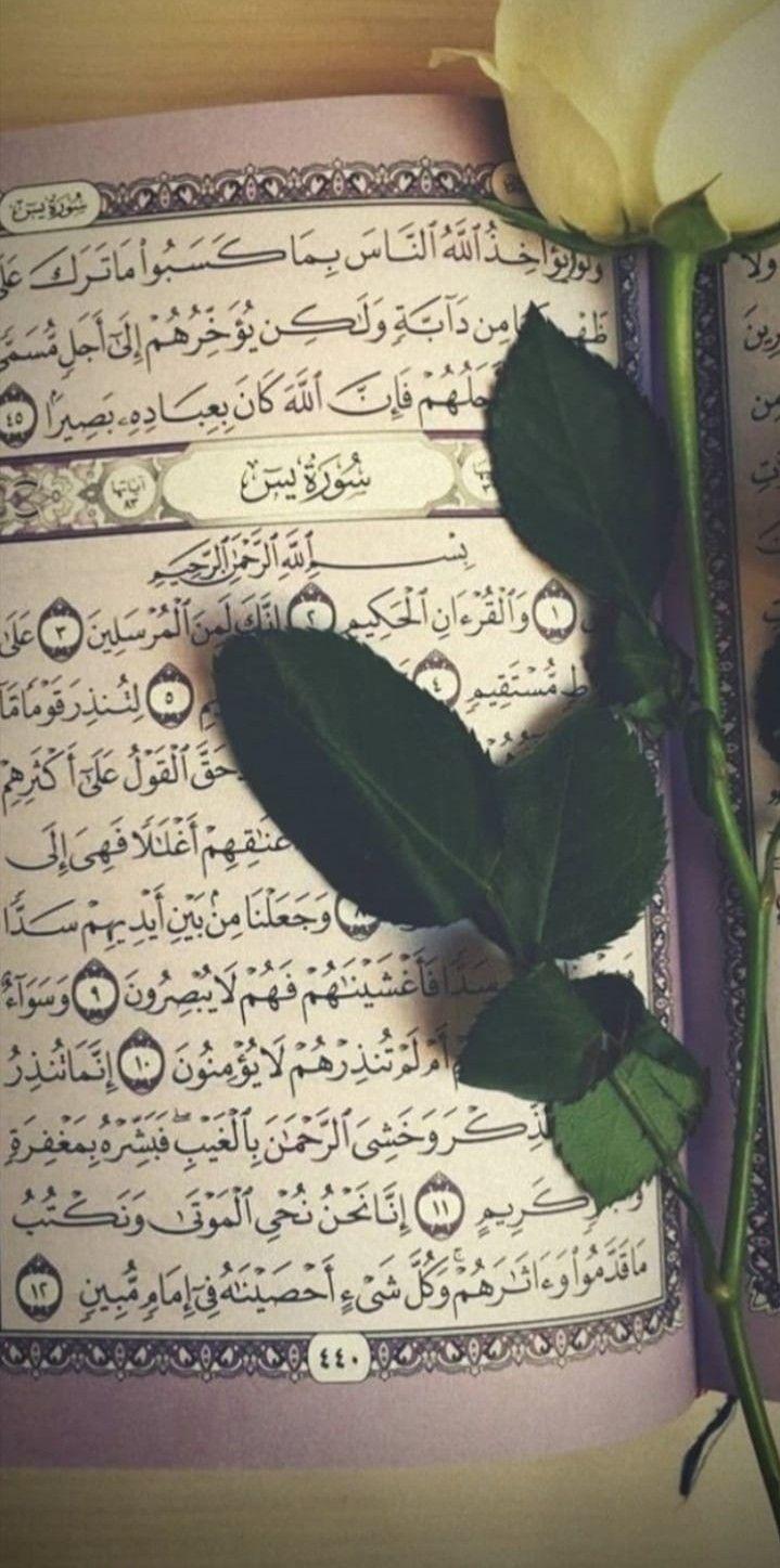 ﻭ ﺟ ﻌ ﻠ ﻨ ﺎ ﻣ ﻦ ﺑ ﻴ ﻦ ﺃ ﻳ ﺪ ﻳﻬ ﻢ ﺳ ﺪ ﺍ ﻭ ﻣ ﻦ ﺧ ﻠ ﻔ ﻬ ﻢ ﺳ ﺪ ﺍ ﻓ ﺄ ﻏ ﺸ ﻴ ﻨ ﺎﻫ ﻢ ﻓ ﻬ ﻢ Islamic Art Calligraphy Islamic Calligraphy Painting Calligraphy Art