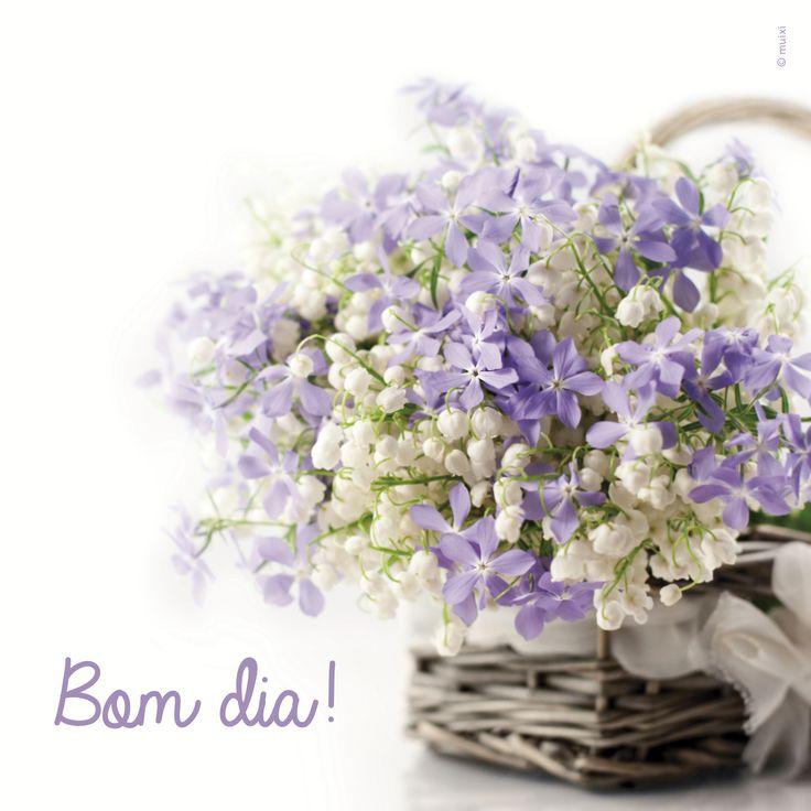 Bom dia! #flowers #quotes @muixicriacoes