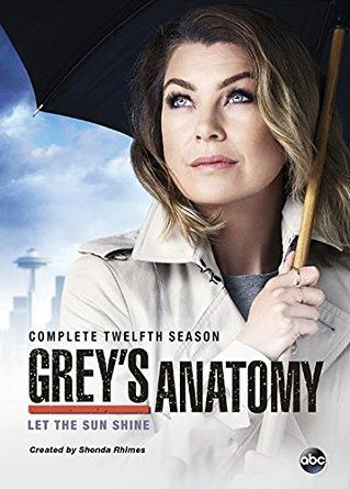 Grey's Anatomy Season 12 (DVD)