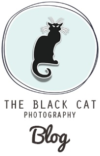 The Black Cat Photography