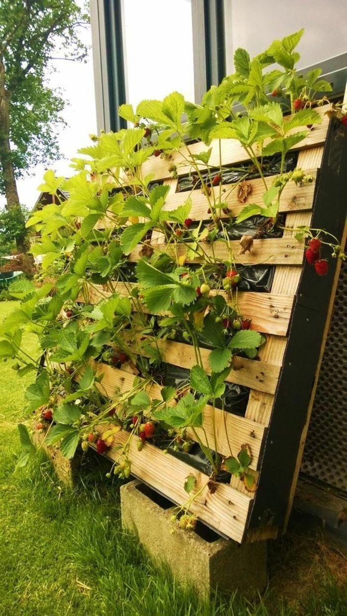 Jardiniere Diy Avec Palette Pouvant Servir De Brise Vue Devant La