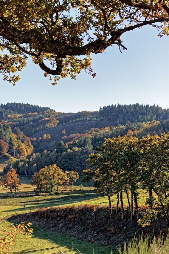 Monts d'Ambazac  -  Haute-Vienne  -  Limousin