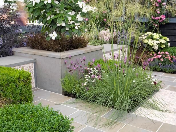 Learn about garden design planner software from experts at HGTV. Discover tips for using one to design your own garden.