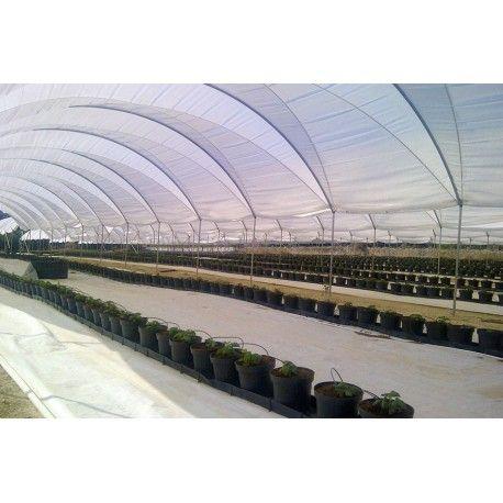 Estufa - Modelo Mini Capilla  Estrutura criada para proteger os cultivos contra as agressões do clima (chuvas, granizos, geadas), sendo indicadas para todo o cultivo que requer muita ventilação (flores, morangos, amoras, etc.), sendo também indicadas para a helicicultu