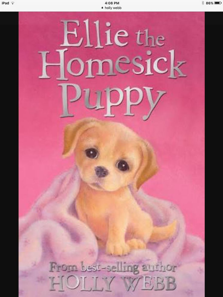 This was the  first book of holly webbs  books I red and I loved it and I am reading a lot of her books now