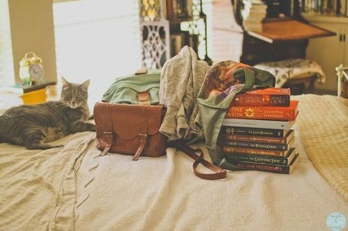 Afbeelding via We Heart It https://weheartit.com/entry/165206721/via/15584923 #bed #books #caption #cat #home #photography #room