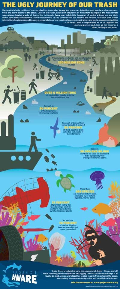 Scientists think over six million tons of marine debris may be entering our ocean every year