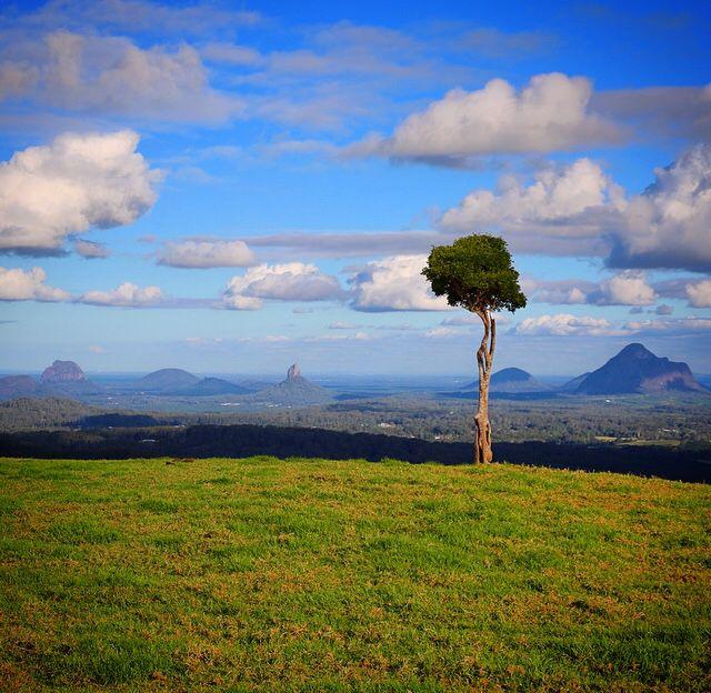 Maleny, Sunshine Coast #VisitSunshineCoast #ThisIsQueensland #SeeAustralia