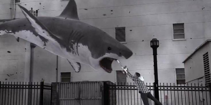 sharknado   The 'Sharknado' Trailer Is The Most Ridiculous Thing We've Ever Seen