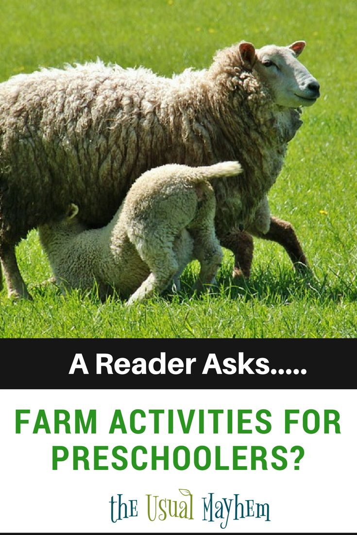 330 best Farm Theme Activities for Kids images on Pinterest ...