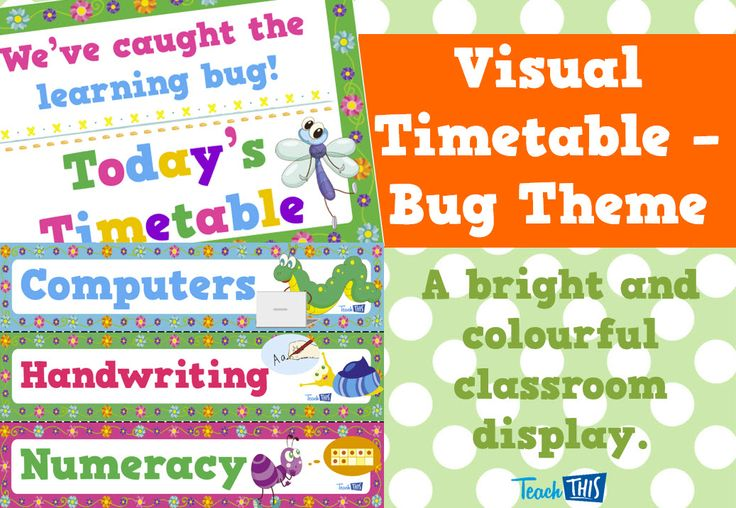 Visual Timetable - Bugs Theme