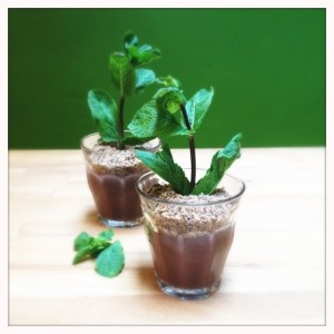 Potted mint-chocolate pudding | Mmm... Lekker | Pinterest