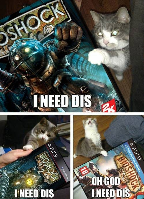 This cat knows whats up #bioshock #playstation