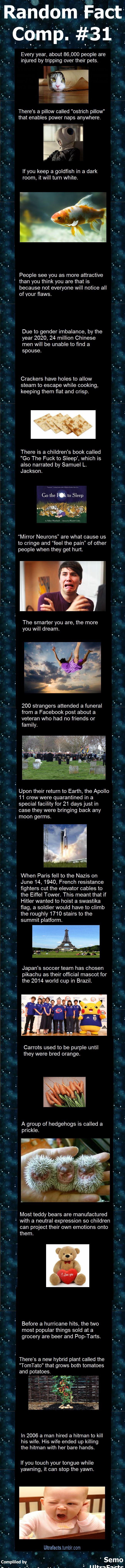 Random Fact Comp