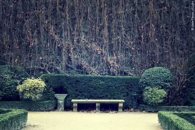 Stone bench inside the hidden gardens of Hôtel de Sully in the Marais
