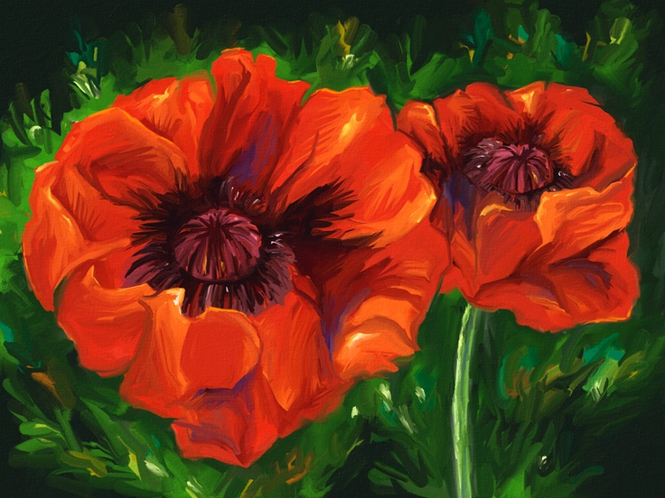 13 best art for sale images on pinterest art for sale digital art red poppies by aaron rutten 18x24 limited edition print for sale https mightylinksfo Gallery