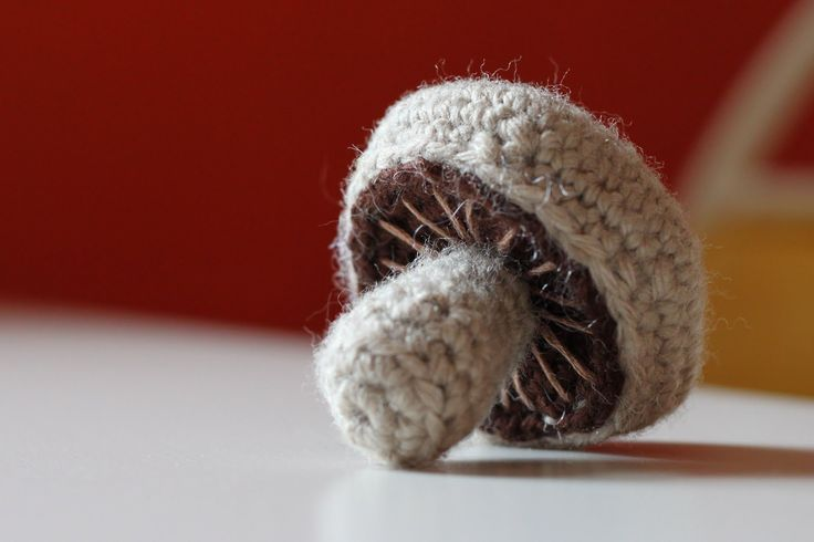 I made a mushroom last night.     MATERIALS  Worsted weight yarn in mushroomy colors. I used tan and dark brown.  Size F crochet hook.  Embr...