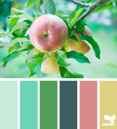 I would paint every room in my house one of these colors!! I love them!
