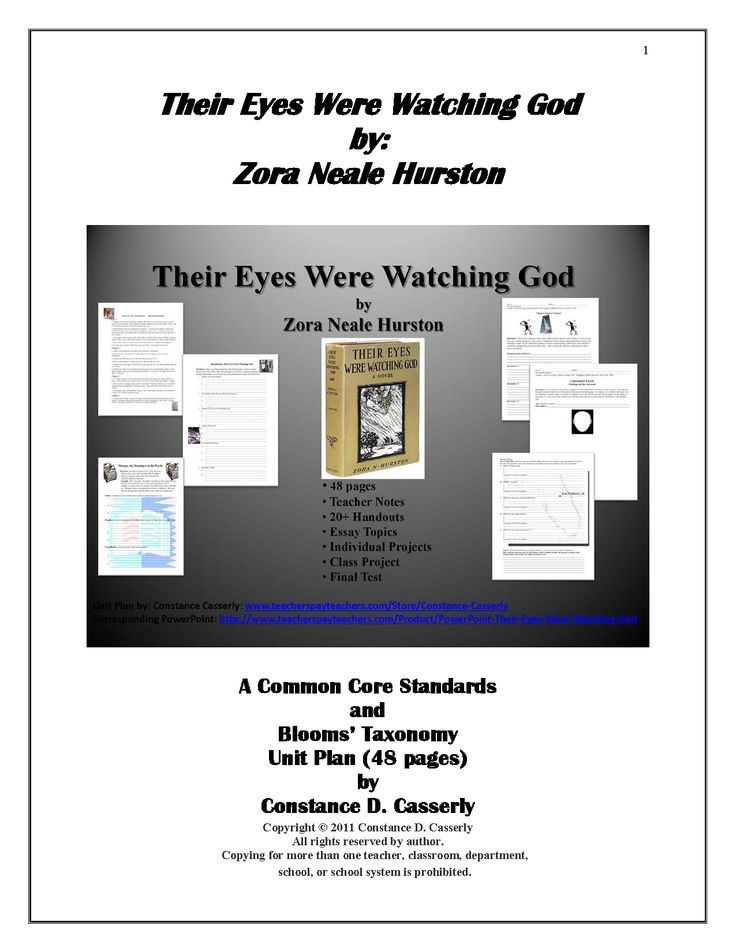Essay On Terrorism In English Literature  Their Eyes Were Watching God Discussion Questions Most Prized Possession Essay also Informal Essays  Best Teaching Their Eyes Were Watching God Images On Pinterest  Essay Of Grandmother