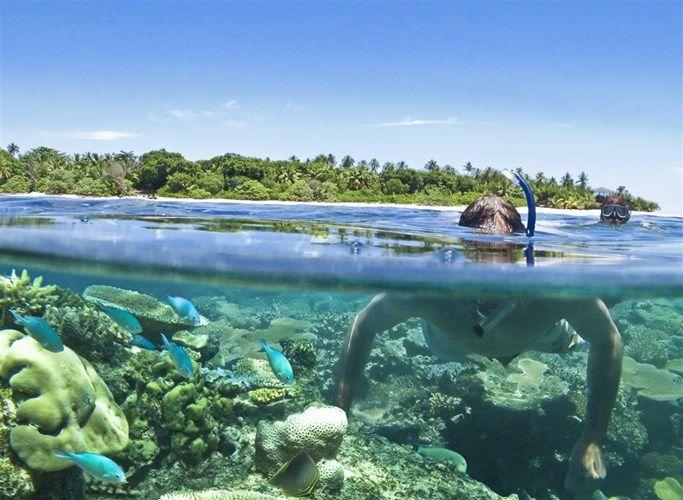 VOMO Snorkelling in Fiji #travel