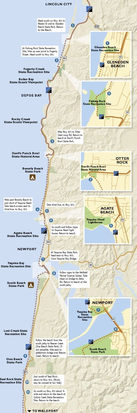 Oregon coast trails map