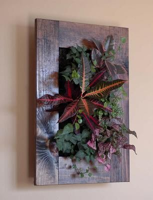 FRAMED VERTICAL GARDENS - pretty idea, and maybe easy'ish to do myself?  Will have to think on this one.