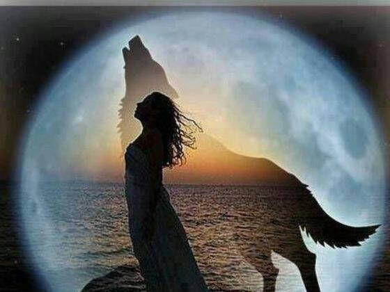 One 1 Card Spirit Animal Free Psychic Oracle Same Day Reading