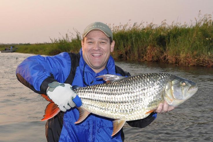 The waters surrounding Sekoma are a paradise for the adventurous angler, whether a conventional, lure or fly fisher, you are up against Tiger Fish, large Tilapia, colourful Bream species, and African Pike.