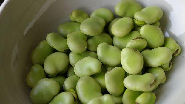 5 ricette per utilizzare le fave in cucina, fresche o secche, eccole in 5 pietanze deliziose