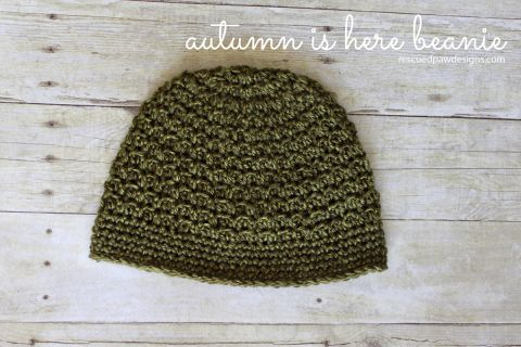 Autumn is Here - A Free Crochet Beanie Pattern - designed by Rescued Paw Designs