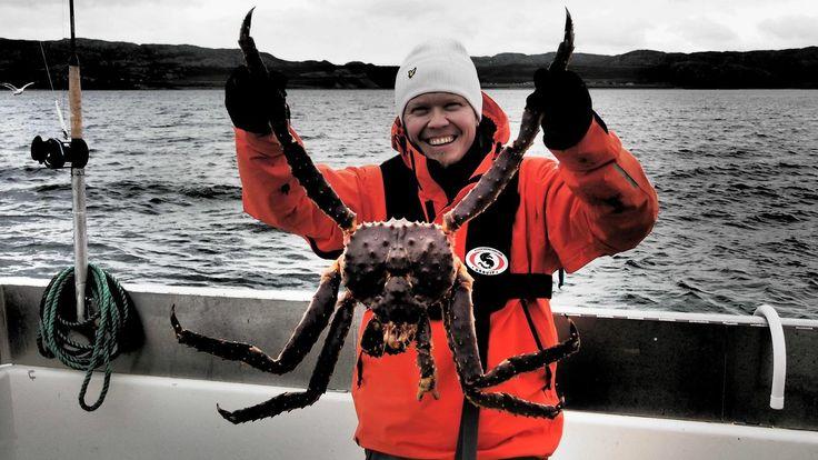 ARKTISET VEDET jakso 5, Norja. Viihteellinen kalastus-, luonto- ja matkailuohjelma Arktiset Vedet syöksyy jäänmurtajan lailla halki arktiste...