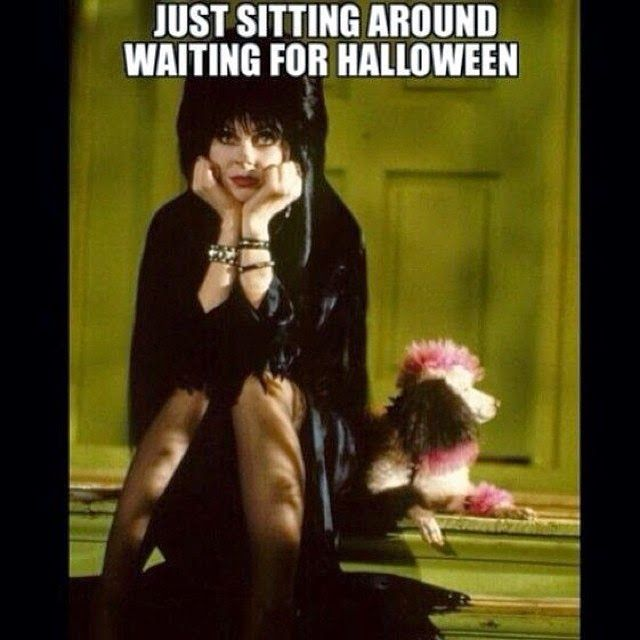 The Best of Halloween Costumes 2014: Funny Halloween Pictures 2014