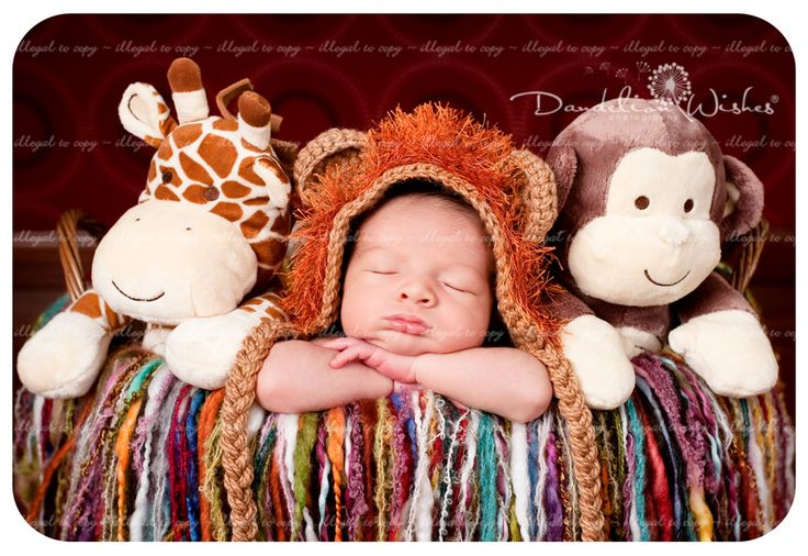 how adorable. Newborn Photographer, Pictures Ideas, Newborns Photographers, Photo Ideas, Animal Ideas, Zoos Baby, Random Pin, Pets Zoos, Newborns Ideas
