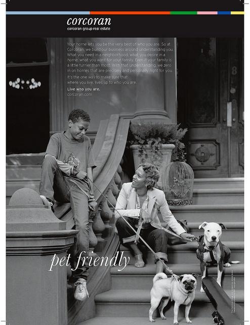 Corcoran Brand Advertising (Pet Friendly)