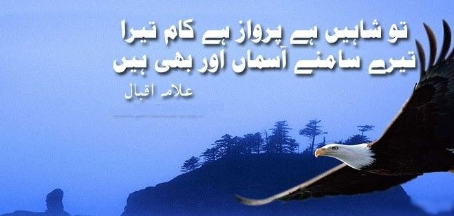 essay on allama iqbal in easy english